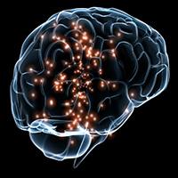 Rare Brain Disorders
