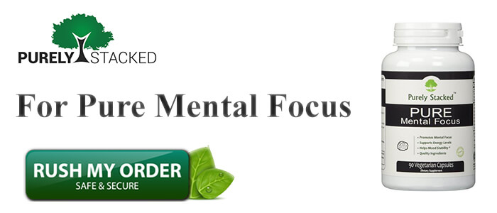 Mental Focus Review