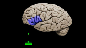 How Video Games Effect Your Brain