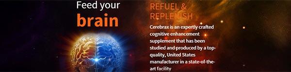 Cerebrax Middle
