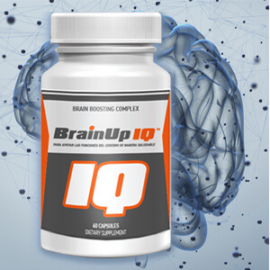 Brainup IQ Supplement